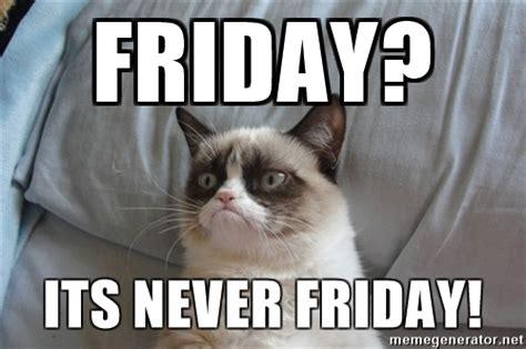 Grumpy Cat Friday Meme - friday its never friday grumpy cat good meme generator