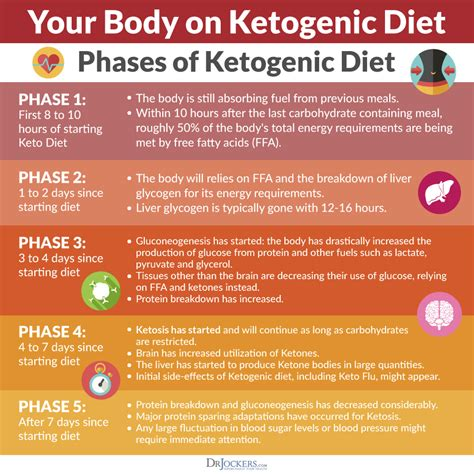 How To Detox Before Ketogenic Diet by The Keto Metabolic Makeover Drjockers