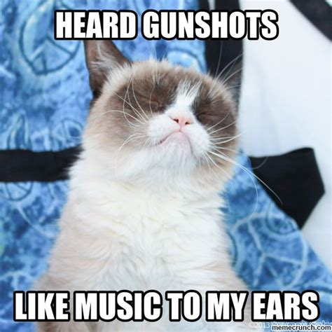 Tardar Sauce Meme - 1444 best tardar sauce grumpy cat images on pinterest