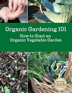 organic gardening 101 how to start an organic vegetable