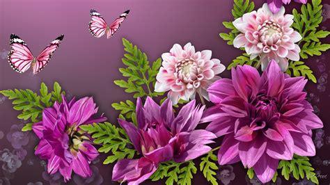 Butterfly P pink butterflies wallpaper 49 images