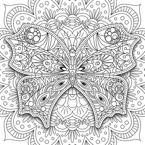 butterfly doodle coloring pages butterfly hand drawn ethnic printable vector in doodle