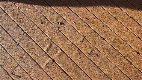 deck restore products menards home design ideas
