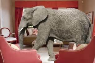 babyzimmer elefant elephant in room psyluv
