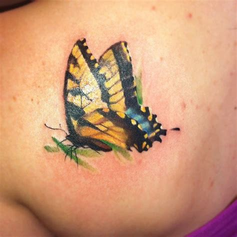 tiger butterfly tattoo 1000 ideas about tiger butterfly on