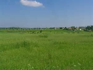 file a field outside gedera jpg wikimedia commons