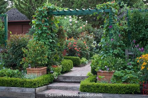Front Yard Trellis Ideas front yard entry to organic edible landscape garden with scarlet runner beans on trellis