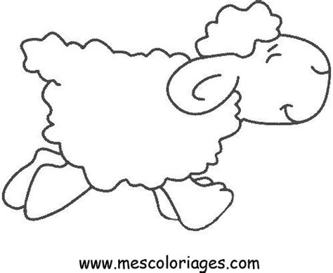 Sheep Coloring Pages Sheep Colouring Page