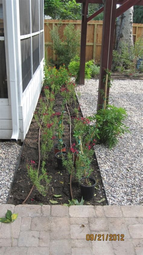 drip irrigation for vertical gardens