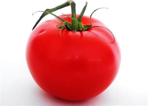 The Tomato by You Say Tomato I Say Tomatoe Either Way It Was