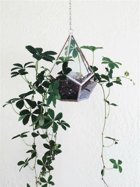 hang planten bloemen buiten planten hang je op homease