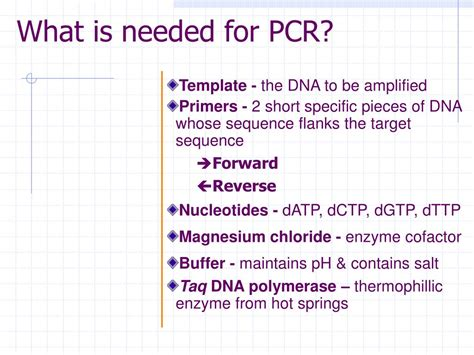 ppt today s pcr gmo detection powerpoint presentation