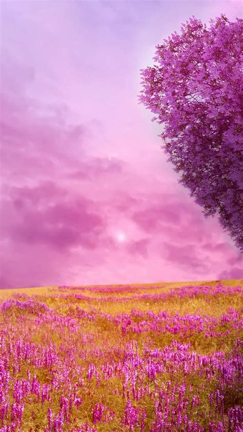 wallpapers for android mobile hd nature spring nature hd wallpapers for android 2018 android