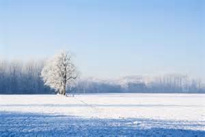 File 1440271644993 jpg 130 84 kb 1100x734 550 367 snowy landscape