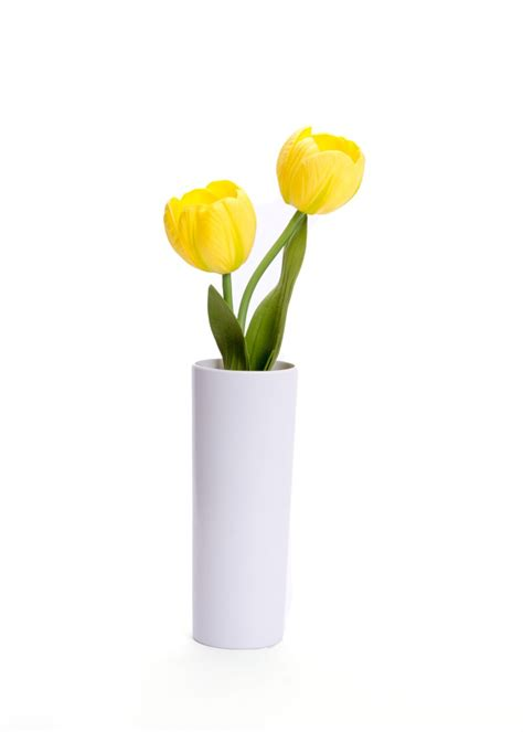 Yellow Vase Pv by Blossom Collection Led Battery Powered Yellow Tulip Flower