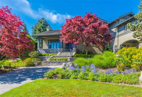 maple tree front yard 101 front yard garden ideas awesome photos