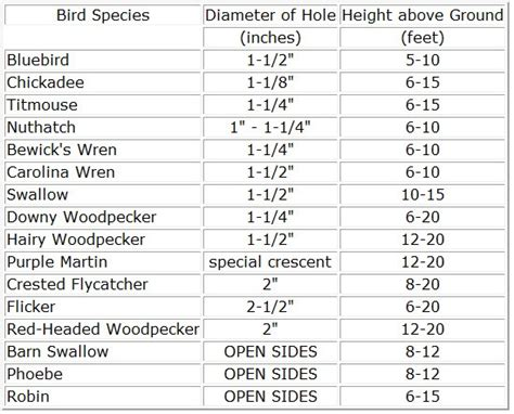 bird house plans hole size