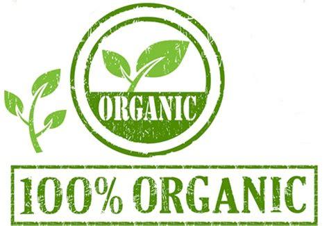 alimento organico 191 los alimentos org 225 nicos mejores que los no org 225 nicos