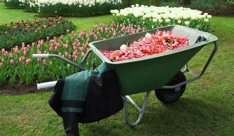 robot per giardino robot da giardino opinioni robot rasaerba honda miimo hrm