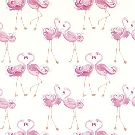 wallpaper direct flamingo flamingo wallpaper 52dazhew gallery