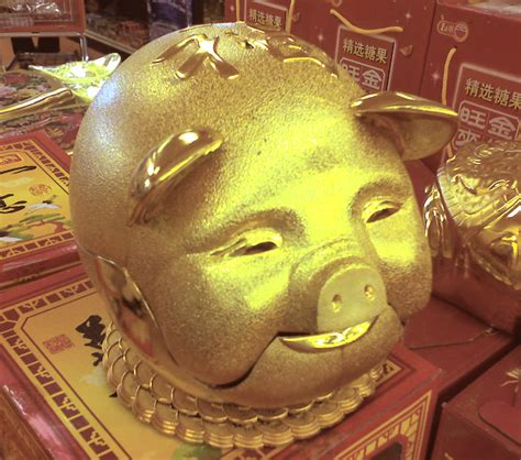 new year of the golden pig year of the pig store new year