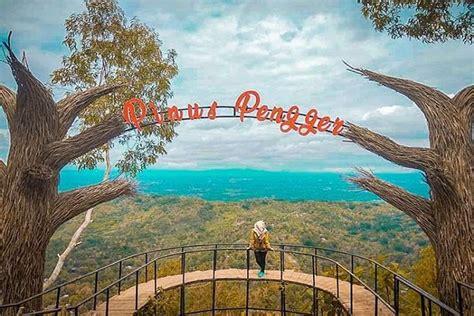 spot foto hutan pinus pengger  hits  populer