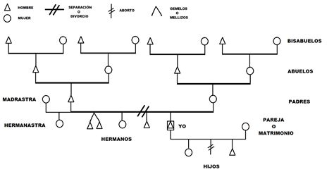 construire lalbero genealogico