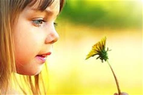 fiori di bach bambini sonno sonno dei bambini e farmaci bambino naturale the