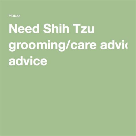 shih tzu grooming needs 17 best images about shih tzu grooming on grooming brushing and bows