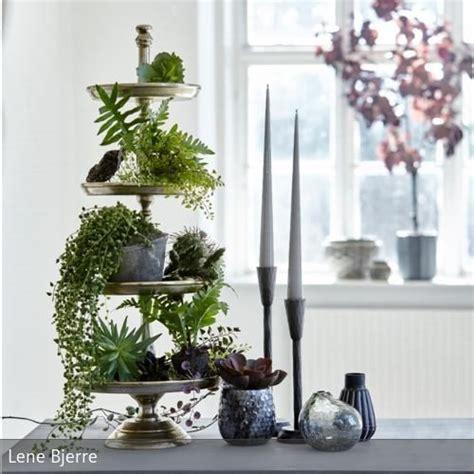 zimmerpflanzen schön dekorieren pflanzen deko wohnzimmer