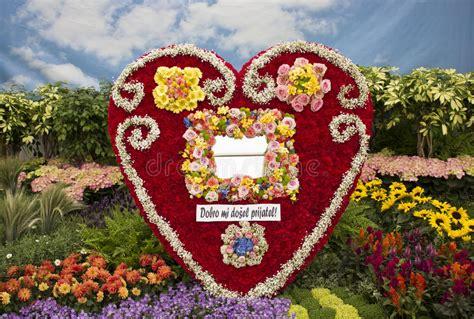 fiore a forma di cuore disposizione di fiore a forma di cuore fotografia