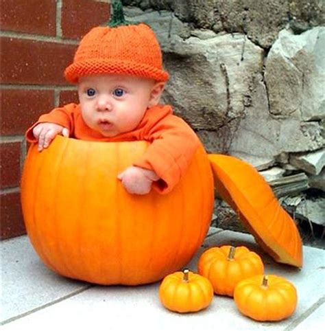 babies inside pumpkins will make you smile - Baby Pumpkin