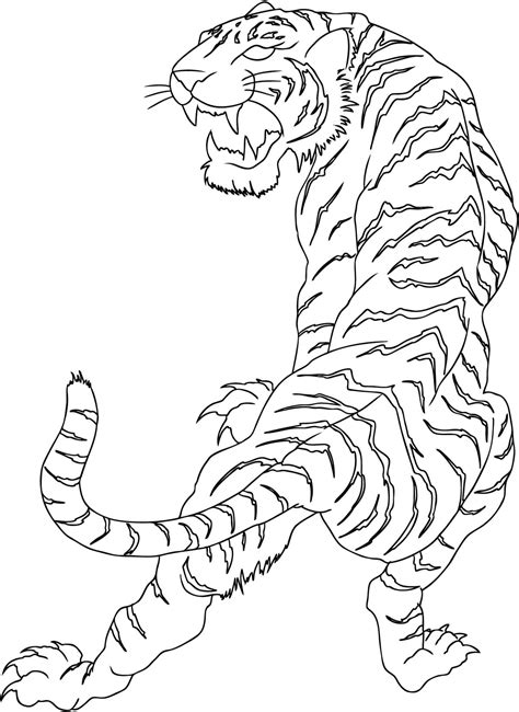 line drawing tattoos tiger junglekey fr image