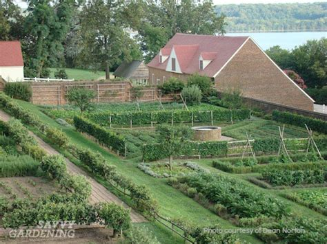 Kitchen Garden Podcast And Savvy Podcast Dean Norton Director Of