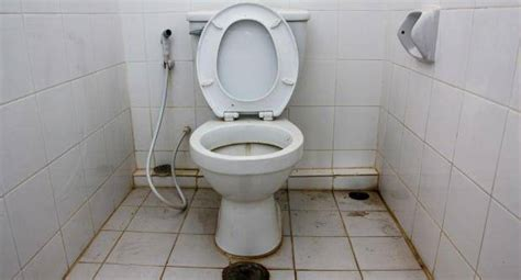 how to poop in public bathrooms how to avoid catching diseases from a public toilet