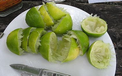 Happy Hour Lime Rickey by Happy Hour Lime Rickey Popsugar Food