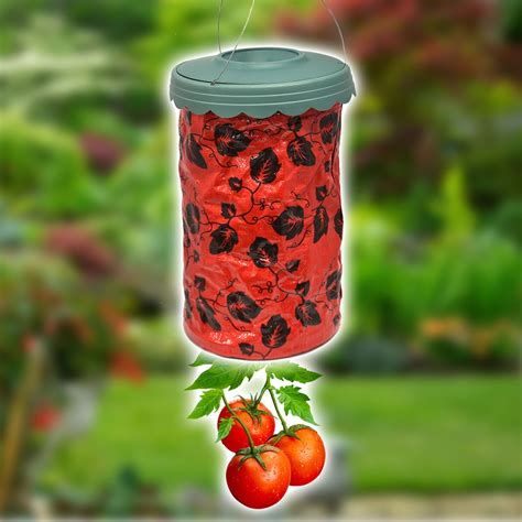 hanging tomato planter garden patio grow your