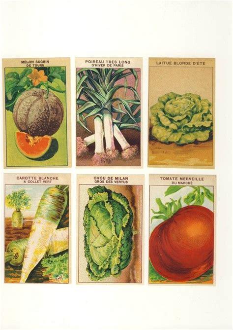 printable vegetable labels 254 best garden graphics images on pinterest