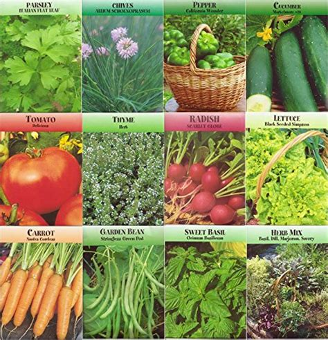 garden seeds vegetable garden vegetable and herb seed variety non gmo easy