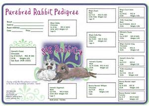 Rabbit Pedigree Template by Rabbit Pedigrees Show Rabbit Information
