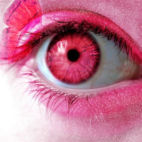 pink eye color 185 best images on beautiful