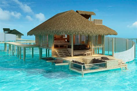 overwater bungalow holidays maldives overwater experiences and whale shark diving