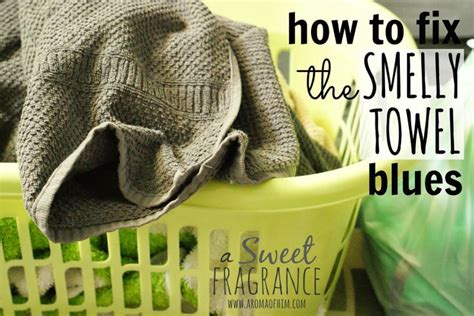 Bibit Parfum Laundry New Towel 17 best images about laundry room organizing on smelly towels washer and dryer and