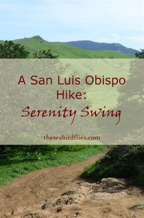 serenity swing san luis obispo 71 best food drink images on pinterest food cook and