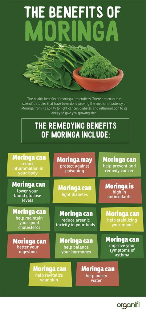 Moringa Side Effects Of Detox by 13 Moringa Oleifera Benefits Backed By Science Lettuce