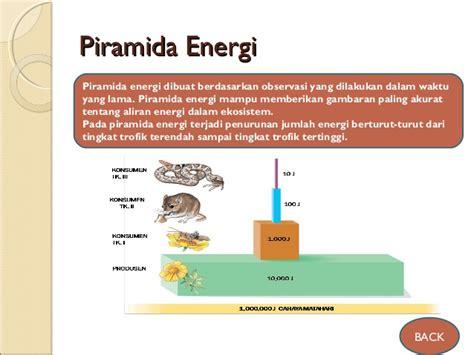 contoh biomassa ppt ekosistem