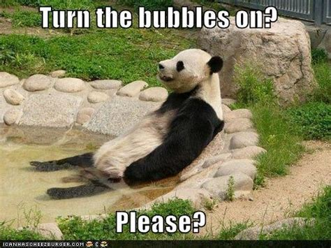 hot tub funny pictures 15 funny hot tub pictures