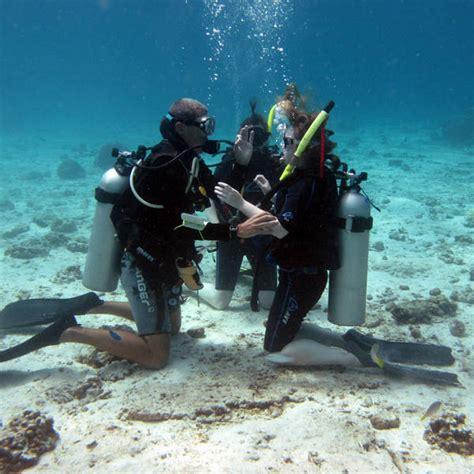 padi dive padi open water diver namloo divers
