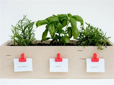 Herb Planters For Kitchen by How To Make A Kitchen Planter Box For Herbs Diy Network