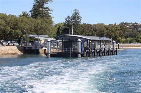 catamaran hire sydney rose bay rose bay wharf syndey harbour wharves ucruise sydney